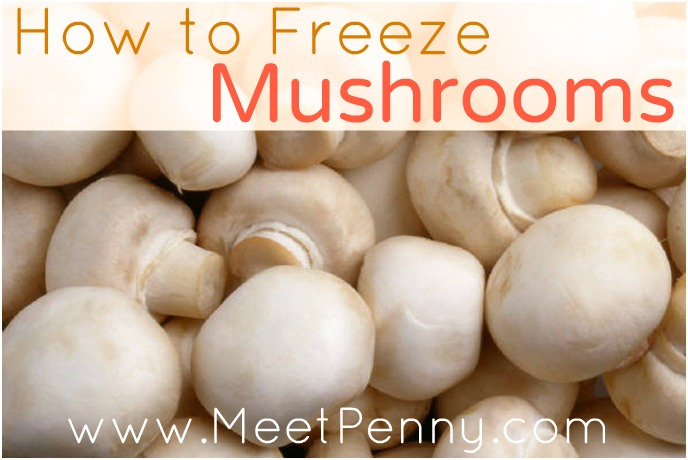 What Freezes? (Mushrooms)