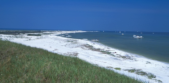Year of the Staycation: Coastal Mississippi