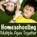 Interesting workbox concept and tips for homeschooling several children of different ages at the same time.