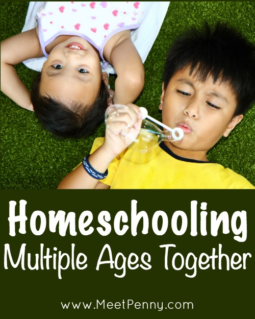 Blueprints: Homeschooling Multiple Ages Together