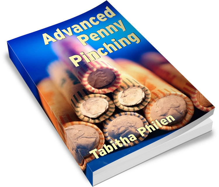 Announcing ~ Advanced Penny Pinching eBook