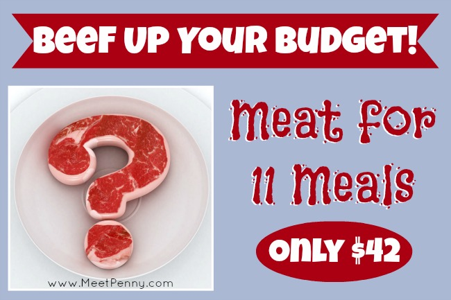Cooking 1X a Week ~ Meat for 11 Meals & Only $42