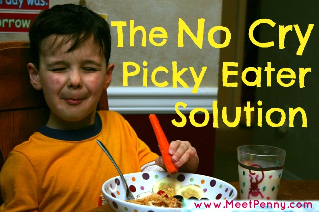 The No-Cry Picky Eater Solution Review
