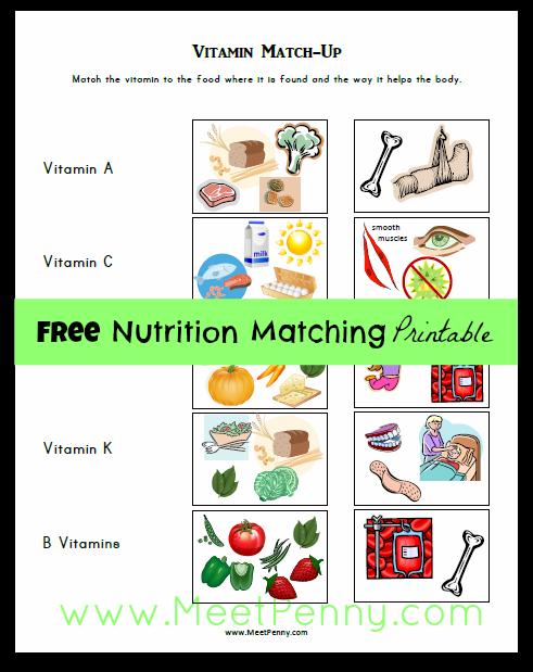 free nutrition printables homeschool lesson