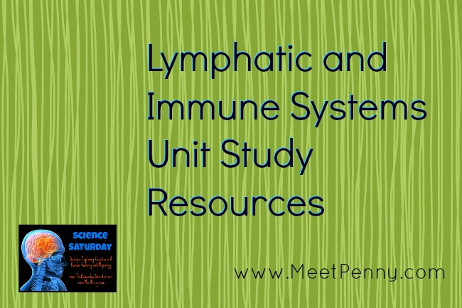 Lymphatic & Immune System Lesson