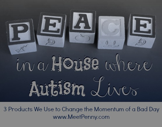 Peace in a House Where Autism Lives ~ Product Recommendation