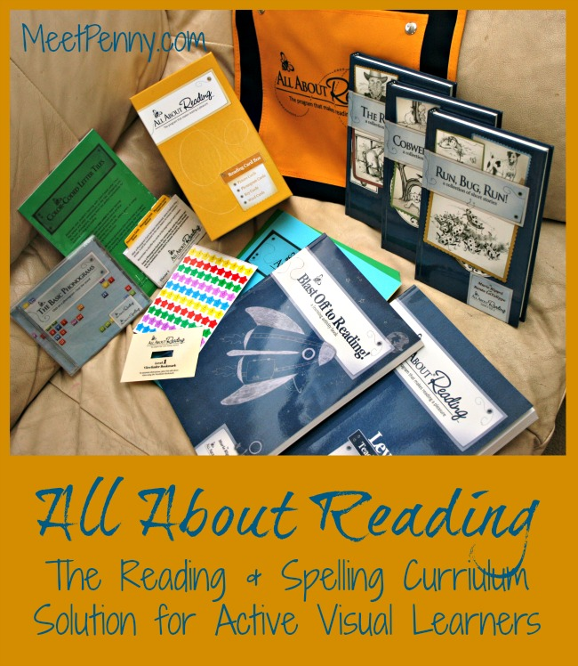 Using All About Reading Curriculum for Kinesthetic Learners