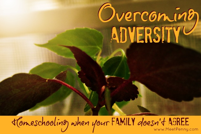 Overcoming Adversity: How to homeschool when your family doesn't agree with your decision.