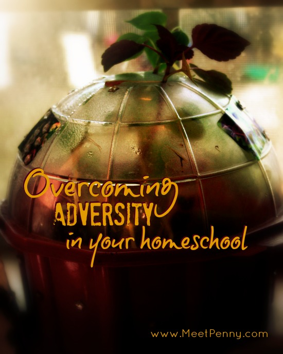 Overcoming adversity: what to say when people don't agree with homeschooling