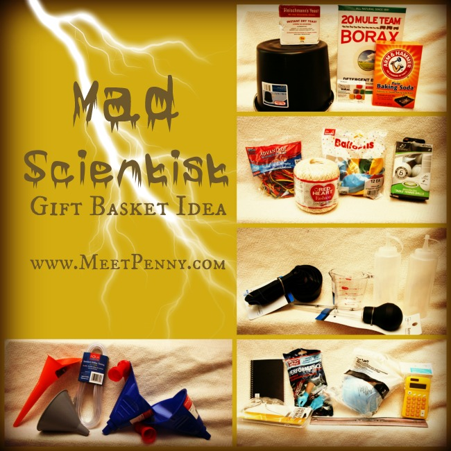 ideas for a homeschool science kit