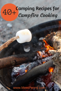 Over 40 fabulous recipes for if I ever take my family camping. LOL