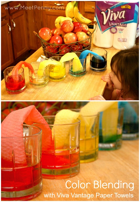Really cool ideas for paper towel science experiments. Great science project!