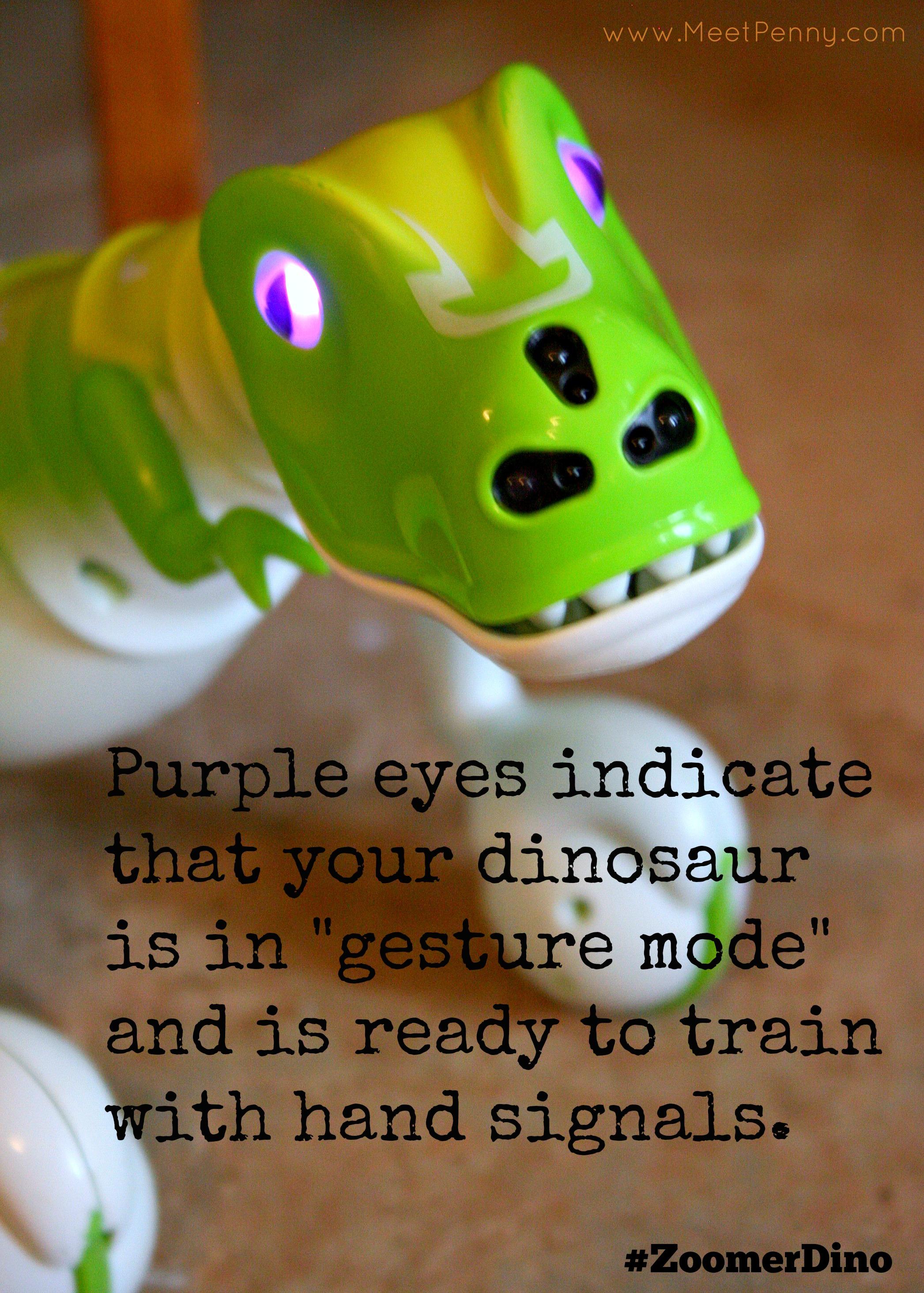 Zoomer Dino Video Zoomer Dino Purple Eyes