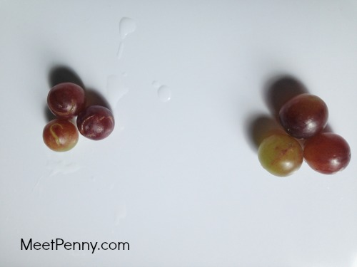Such a simple homeschool science experiment. Virtually NO prep required.