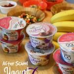 Easy After School Yogurt Snack Bar