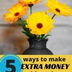 5 Ways to Make Extra Money This Spring