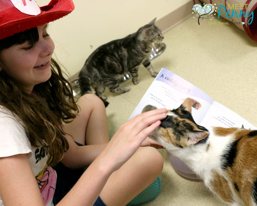 Encourage your child to read and volunteer at the same time by visiting your local ARF (Animal Rescue Foundation) to snuggle up with a furry friend and share a book.