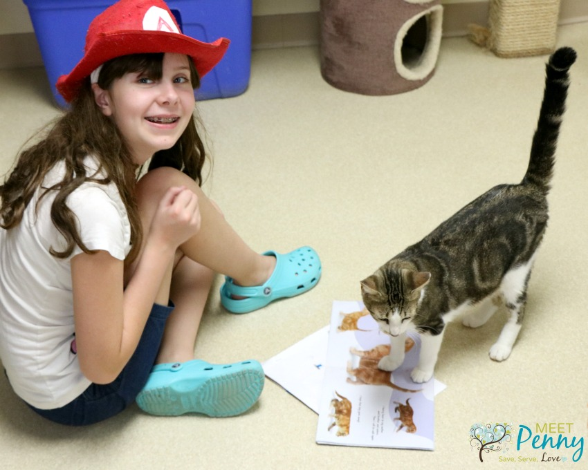A Lesson In Volunteering Reading To Cats Meet Penny